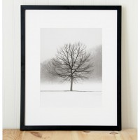framing photography vanilla dream 200x200 Home Decor