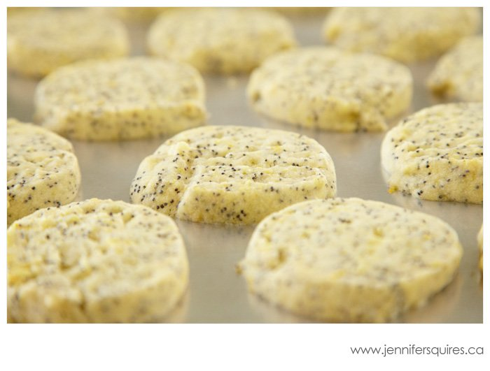 food photography lemon poppyseed cookies 092 Food Photography   Lemon Poppyseed Cookies