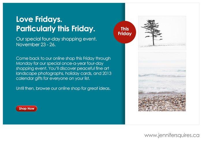 Black Friday Through Cyber Monday Sale 2012