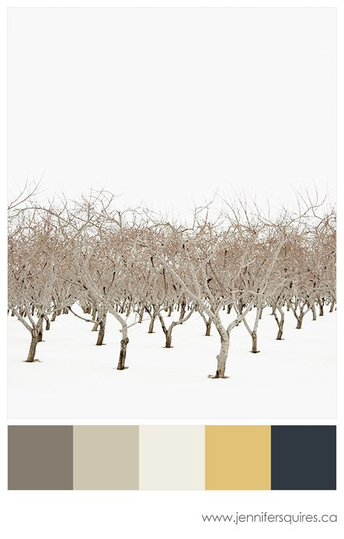 Colours of 2013 - Benjamin Moore - Urbanite