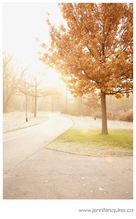 Landscape Photography - Morning Run