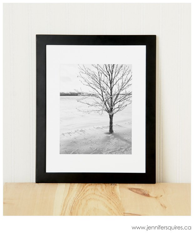 8x10-Frame-with-Tree-Photograph-Shiver