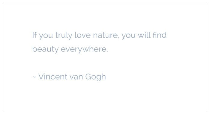 love nature vincent van gogh quote Love Nature