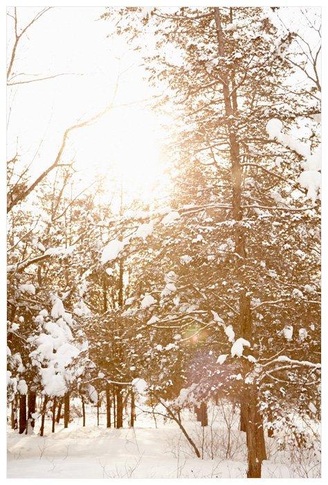 Winter Yurting - Sunshine