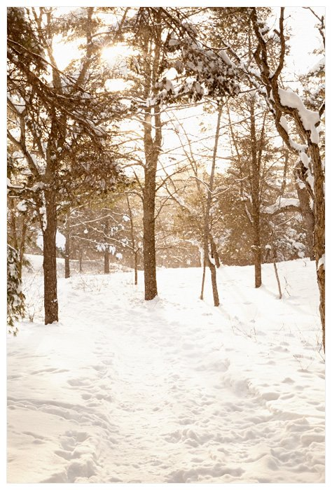 Winter Yurting - Walking Trail