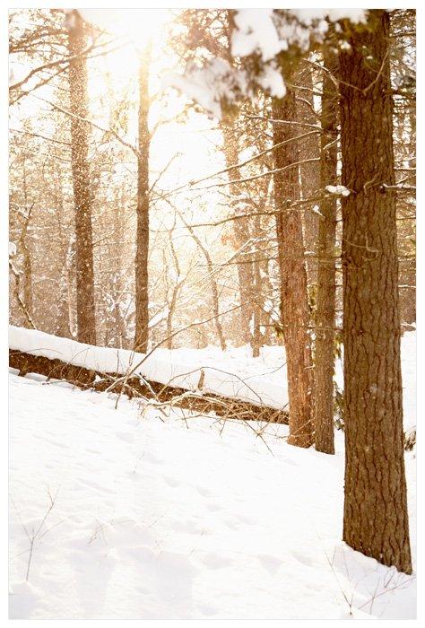 Winter Yurting - Nature Walk