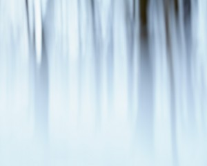 Abstract Winter Forest - Indefinite Winter