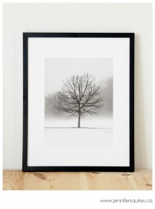 Framing Photography - Vanilla Dream - 11x14 in a 16x20 Frame