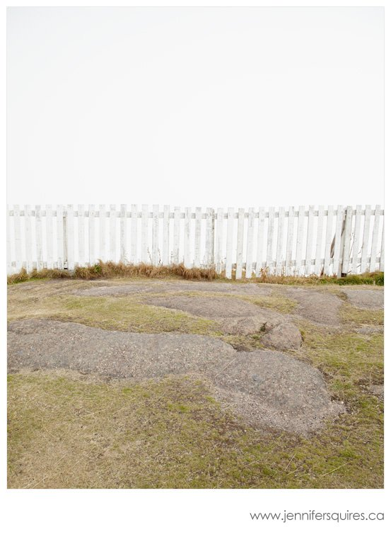Newfoundland Fog Photography - Other World