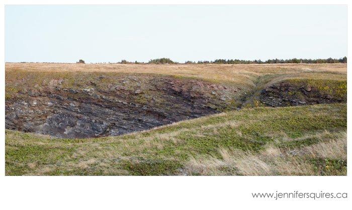 Newfoundland Landscape Photography - Romp