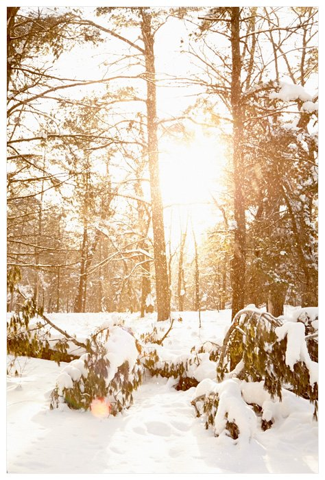 Winter Yurting - Falling Snow