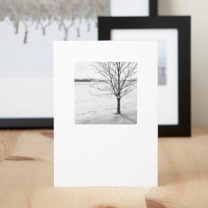 Shiver - Christmas Greeting Cards
