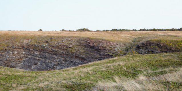 Romp - Newfoundland Landscape Photography