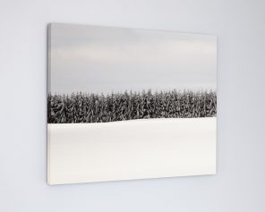 canvas-tree-wall-art-where-the-wild-things-are