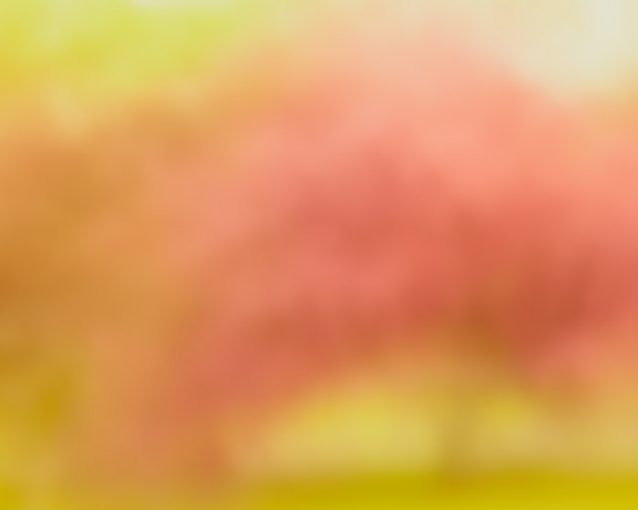 Modern Abstract Tree Picture - Sunday Afternoon Picnic