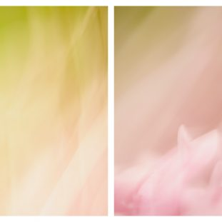 Modern Nursery Wall Decor // Hailey + Emily // Jennifer Squires