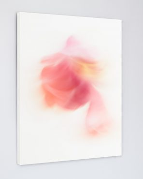 Farrah - Abstract Flower Art Canvas