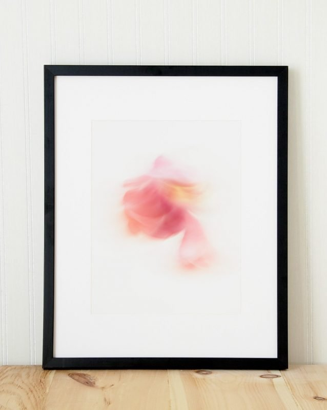 Farrah - Abstract Flower Art