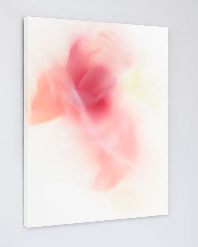 Alisha - Pink Abstract Flower Art Canvas