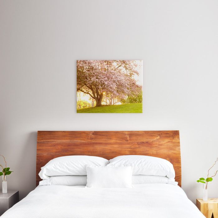 24x30 canvas above queen size bed