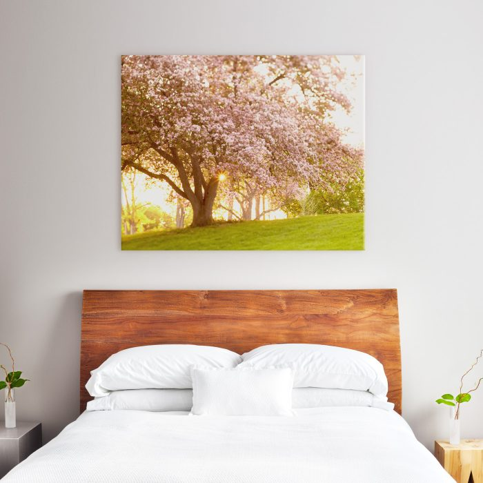 40x50 canvas above queen size bed