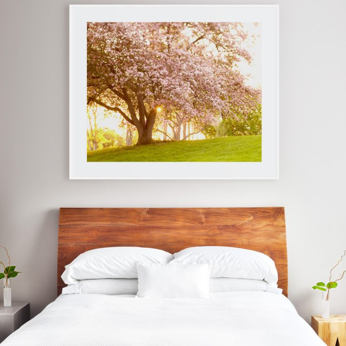 40x50 print above queen size bed
