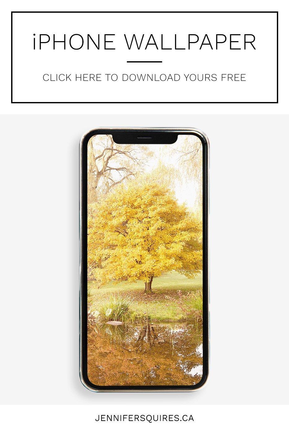 november 2020 wallpaper calendar iphone banner
